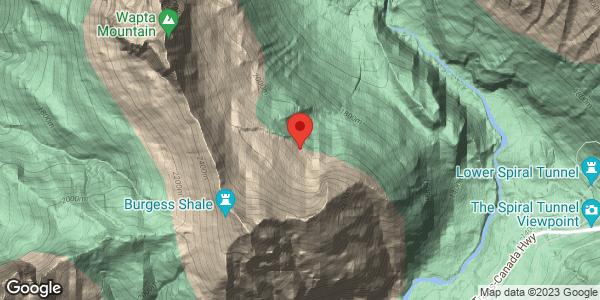 Mt. Fiels