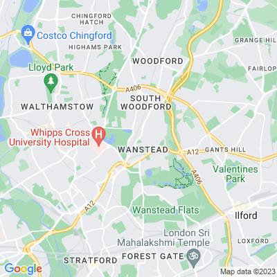 War Memorial Green and Tarzy Wood, Wanstead Location