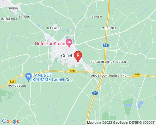 Google Karte von Rohrreinigung Gescher