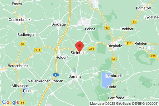 Karte Steinfeld (Oldenburg)