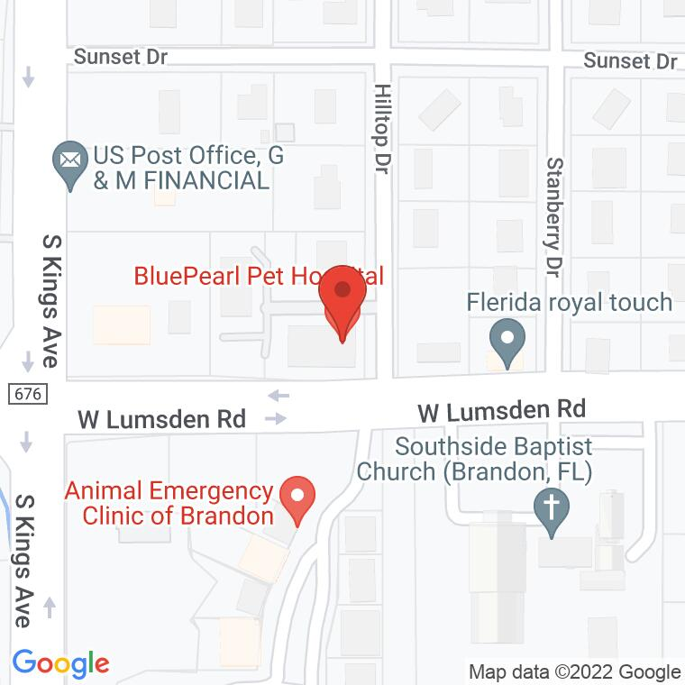 Google Map of 607 Lumsden Professional Ct., Brandon, FL 33511, 607 Lumsden Professional Ct., Brandon, FL 33511