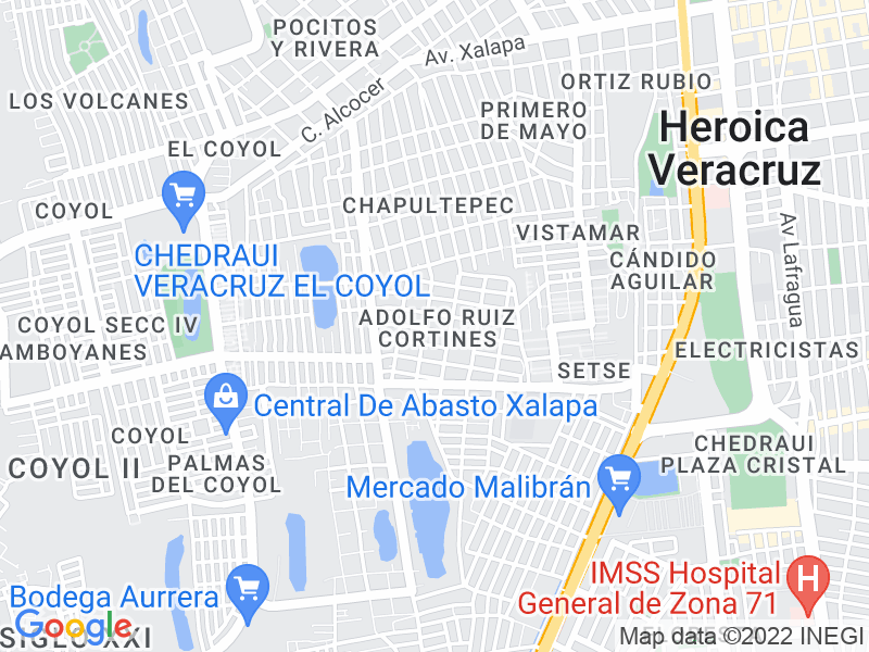 Adolfo Ruíz Cortines, Veracruz