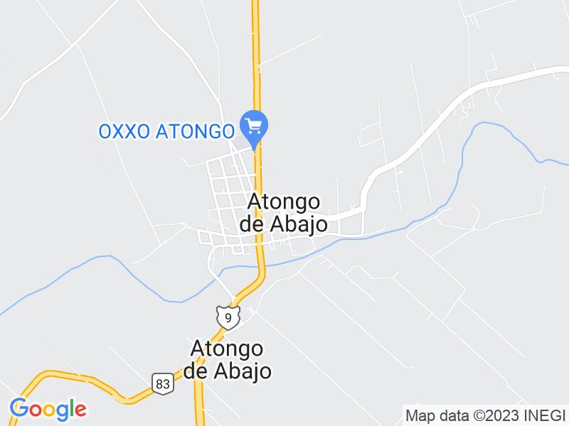 Atongo de Abajo, Nuevo León