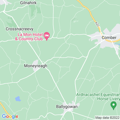 Ballyalolly House Location
