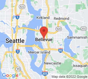 Job Map - Bellevue, Washington  US