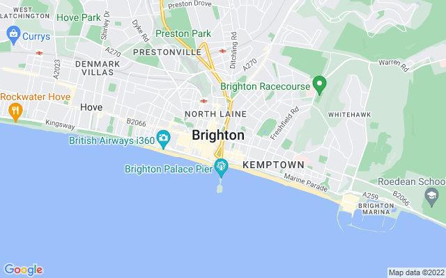 Brighton Survey Quotes
