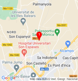 Google Map of Camí son Llompart, Palma, Baleares, Spain