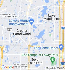Carrollwood FL Map