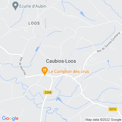 bed and breakfast Caubios-Loos
