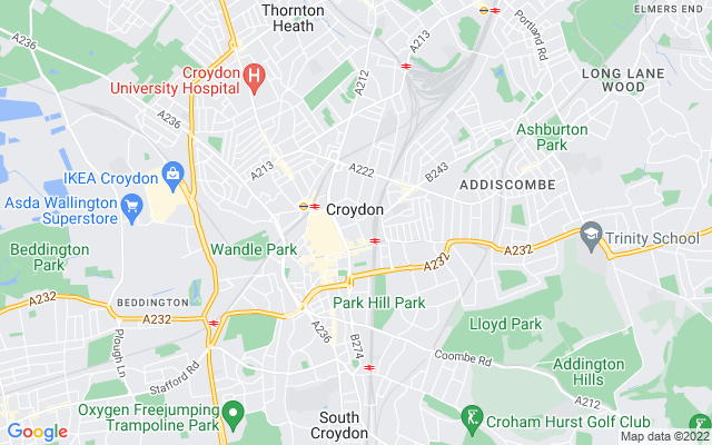 Croydon Survey Quotes