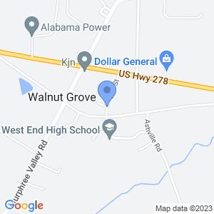 Elm St, Walnut Grove, AL 35990, USA
