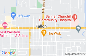 payday and installment loan in Fallon