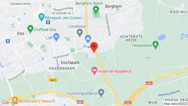 Wassink+Autogroep+Oss op Google Maps