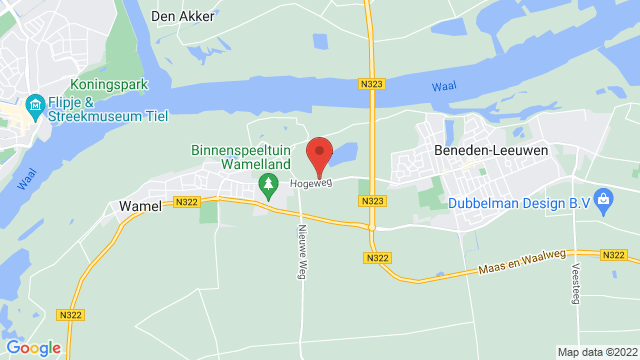 Wassink+Autogroep+Wamel op Google Maps