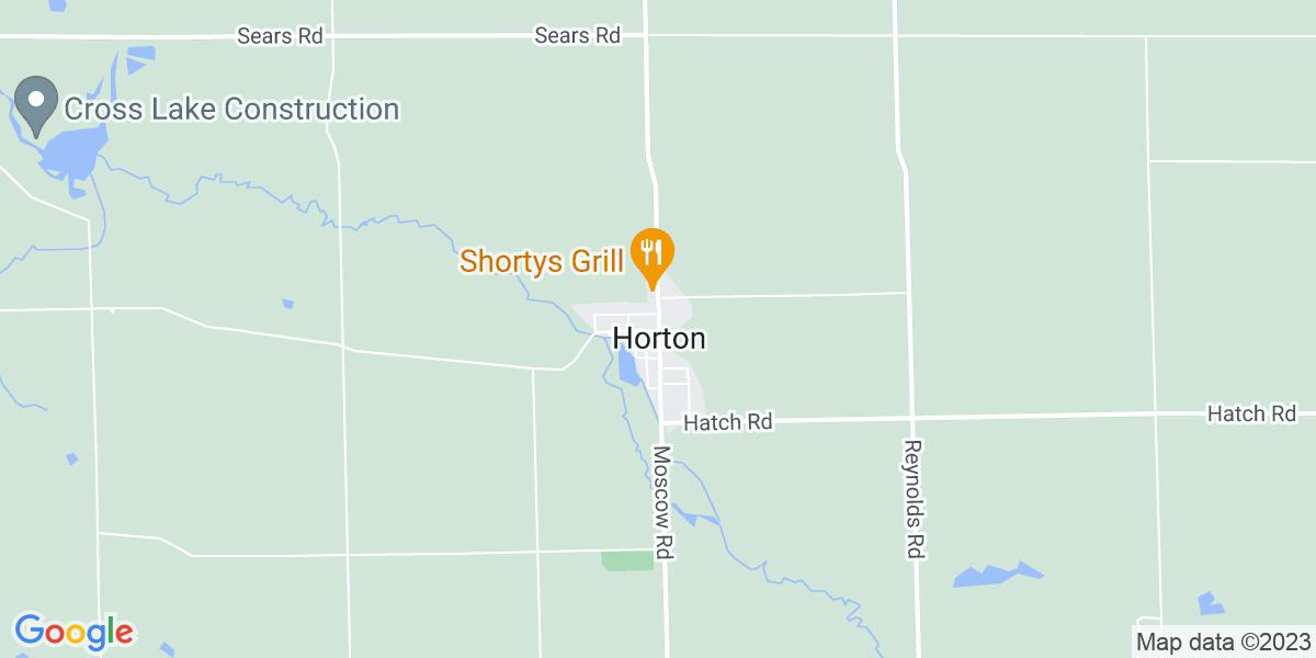 Horton, MI