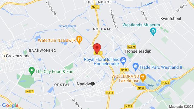 Renault+Pro%2B+Naaldwijk op Google Maps