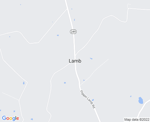 Payday Loans in Lamb