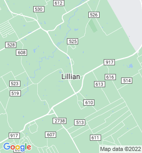 Lillian TX Map