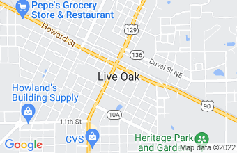 payday and installment loan in Live Oak