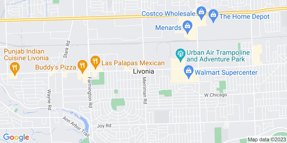 Livonia, MI
