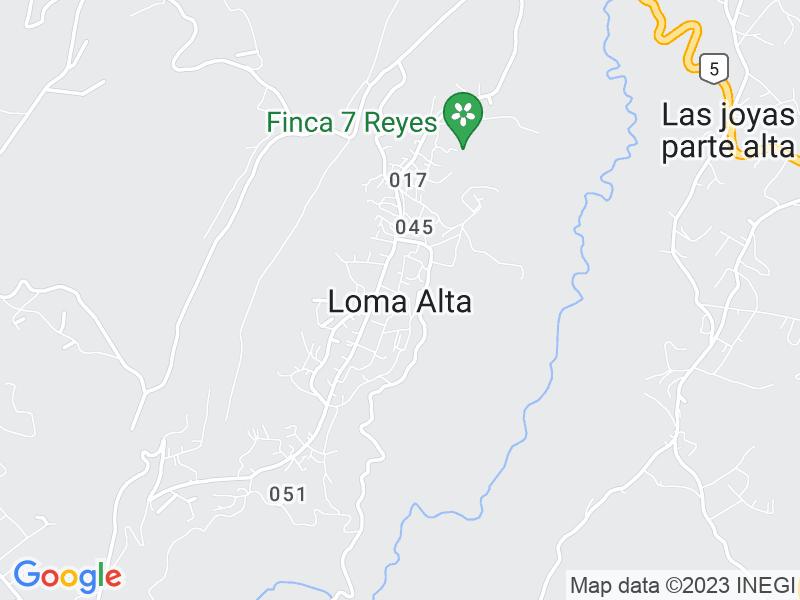 Loma Alta, Estado de México