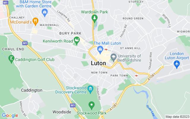 Luton Survey Quotes