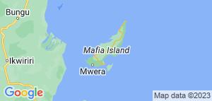 Dive Station -Mafia. 10 dage Tanzania