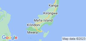 Barfodsparadis -Safari tillæg. Mafia Island. Tanzania