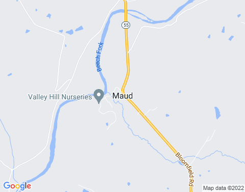 Payday Loans in Maud