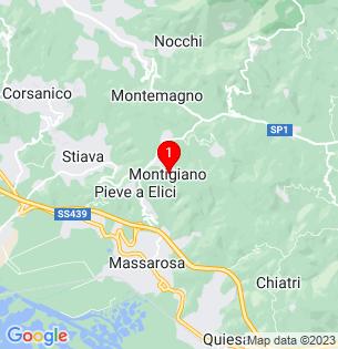 Google Map of Montigiano-Massarosa, Tuscany, Italy