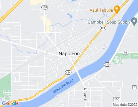 payday loans in Napoleon