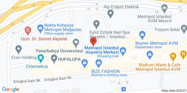 Google Map of NegoSmart