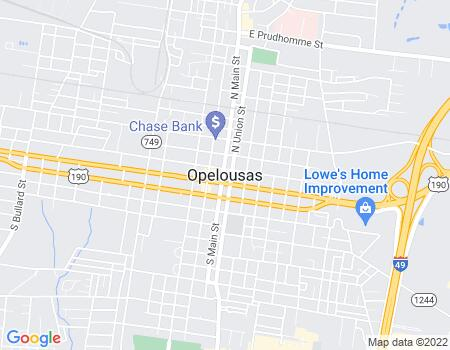 payday loans in Opelousas