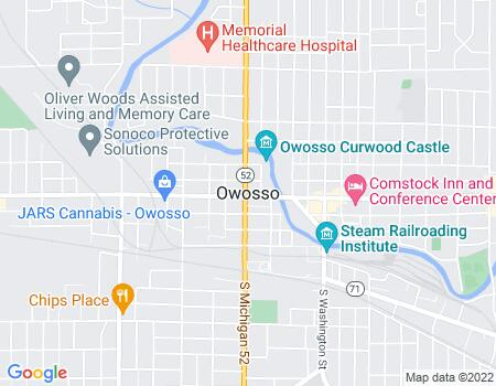 payday loans in Owosso