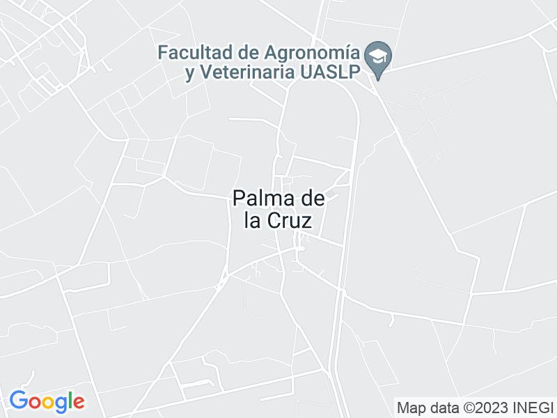 Palma de la Cruz, San Luis Potosi