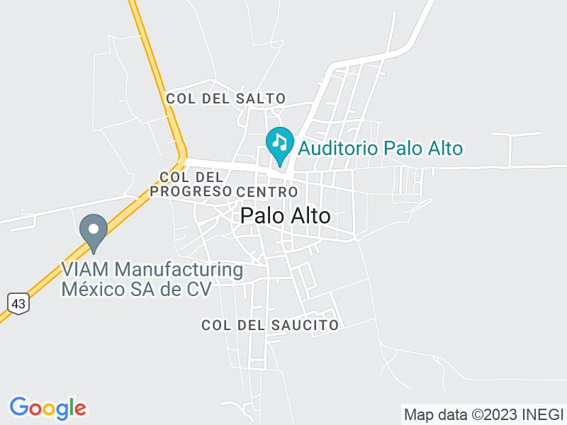 Palo Alto, Aguascalientes