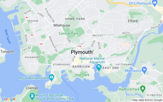 Plymouth Survey Quotes