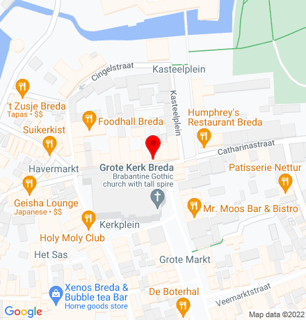 Google Map of Reigerstraat 10 4811 XB Breda
