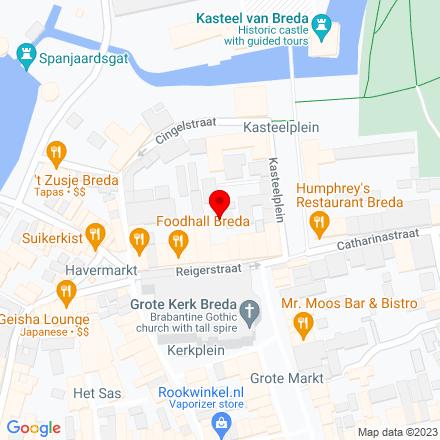 Google Map of Reigerstraat 16 4811 XB Breda