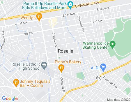 payday loans in Roselle