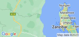 Bryllupsrejse -Safari & Strand. 7 dage Tanzania. 2 pers. fra kr. 23.990,-