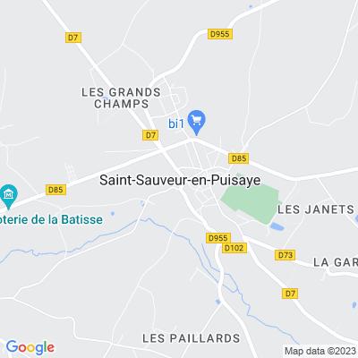 bed and breakfast Saint-Sauveur-en-Puisaye