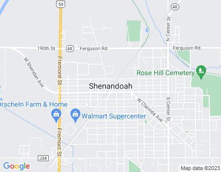 payday loans in Shenandoah