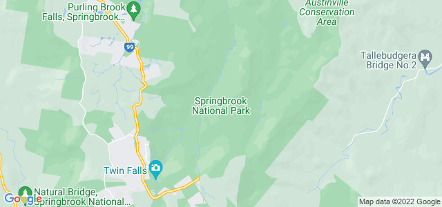 Springbrook National Park, Queensland - Austrália