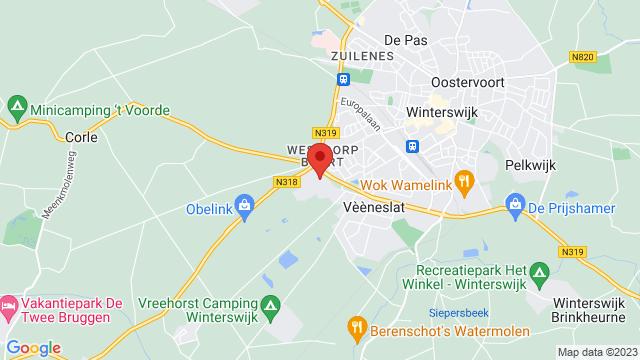 Wassink+Autogroep+Winterswijk op Google Maps