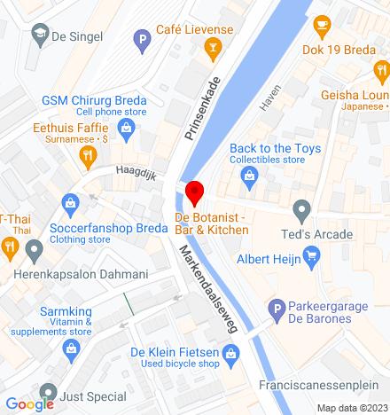Google Map of Tolbrugstraat 19 4811 WN Breda
