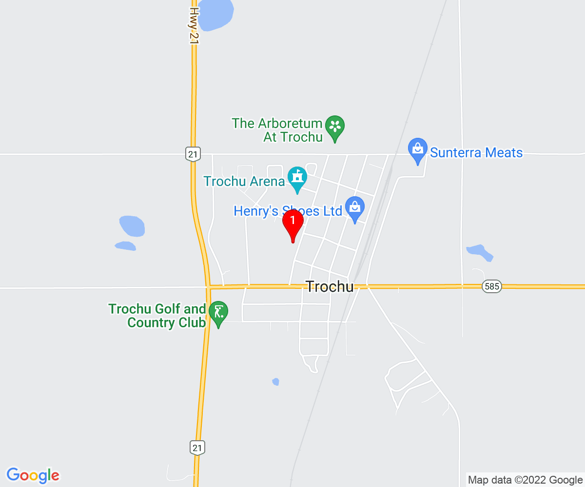 Google Map of Trochu Valley School