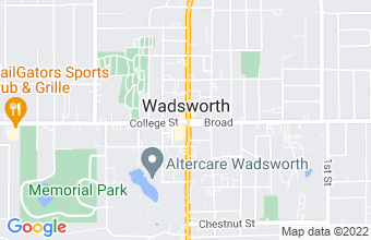 payday and installment loan in Wadsworth