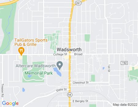 payday loans in Wadsworth