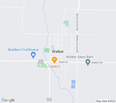 Payday Loans in Walker